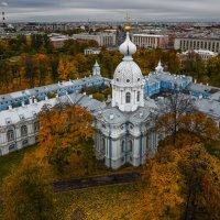 Осень с высоты :: Наталья Левина