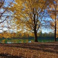 Осень - рыжая девчонка.... :: Galina Dzubina