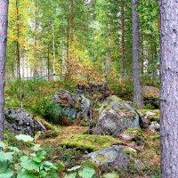 Камни :: Ольга Васильева