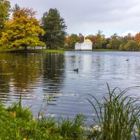 Осенний пейзаж :: ирина )))