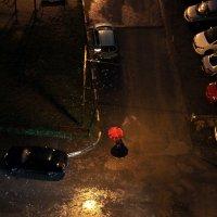 Дождь :: Александр Пиленгас