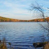 Осень на озере :: Михаил Вайсман
