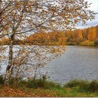 Однако, осень... :: Вячеслав Минаев