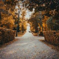 Осень :: ProFi ******