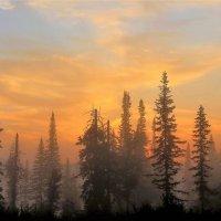 Там на востоке за туманом уже восходит солнце :: Сергей Чиняев