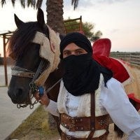 Араб с лошадью :: Елена Науменко