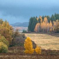 Дожди... :: Влад Никишин
