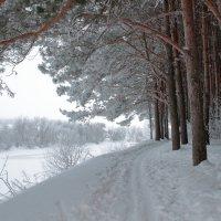 Морозно :: Татьяна Шаклеина