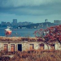 Владивосток, вид на город с острова Русский :: Эдуард Куклин