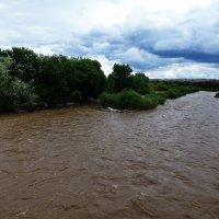 река Чарын. :: Murat Bukaev