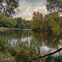 Озерцо :: Владимир Гилясев