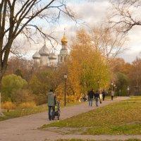 Осенняя пора :: Ирина Бархатова