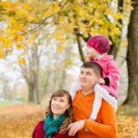 Когда в семье  уже не трое но еще и не четверо :: Наталья Быстрова