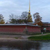 Петропавловская крепость в октябре 2017 года. :: Светлана Калмыкова