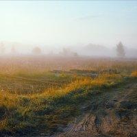 Осенний рассвет... :: Александр Никитинский
