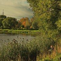 Осенняя забава :: Владимир Гилясев
