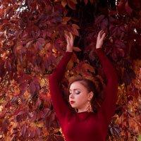багровые краски осени :: Марина Макарова