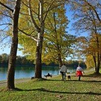 Теплая осень..... :: Galina Dzubina