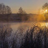 Морозный рассвет :: Сергей Корнев