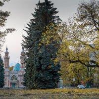 осенний пейзаж :: Вадим Бурмистров