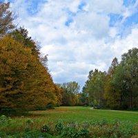 Как прекрасно умеет осень играть красками! Такие цвета и оттенки невозможно повторить!... :: Galina Dzubina