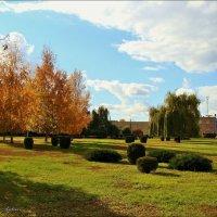 Осенний солнечный денёк! :: °•●Елена●•° Аникина♀