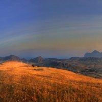 осень покрыла золотом поля :: viton