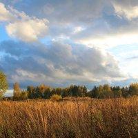 Осеннее небо :: Катя Бокова