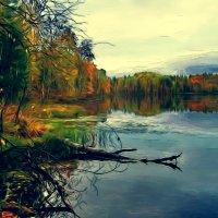 Разноцветная   осень :: Ольга Cоломатина