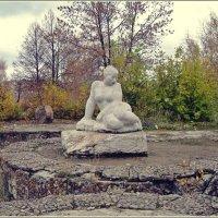 В осеннем парке :: muh5257