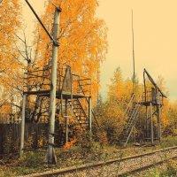 Осенью :: Сергей Кочнев