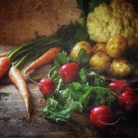 овощи :: alexandr lin