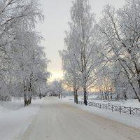 Короткий зимний день. :: Елена Михайлова .