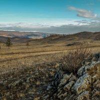Просторы Тажеранской степи. Байкальский национальный парк. :: Rafael