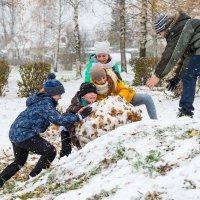 Первый снег. :: Анатолий Сидоренков