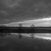 Отражение в реке. :: Виктор Евстратов