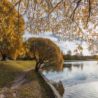 Осень в городе :: Serge Riazanov