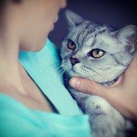 Нравоучения хозяйки слушаем не охотно... :: Екатерина Саблина
