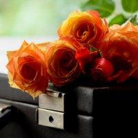 Натюрморт с розами :: Татьяна Евдокимова