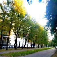 Осенний бульвар :: Алексей Килимник