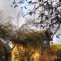 необычный домик в Мелужи :: Анна Воробьева