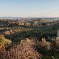 Сан-Джаминьяно. Холмы Тосканы. :: Надежда Лаптева