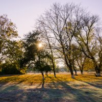 Яркое утреннее солнышко и изморозь на траве. :: Владимир