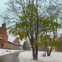 Первый снег в городе!) :: Татьяна