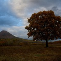 Уж небо осенью дышало... :: Сергей