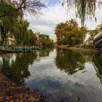 Осенний парк. :: Павел Петрович Тодоров