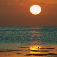 В море тонет медленно закат... :: Лилия .