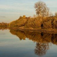 Осенняя :: Дмитрий Сиялов