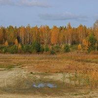 октябрь :: оксана