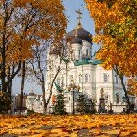 Осень :: Oleg Akulinushkin